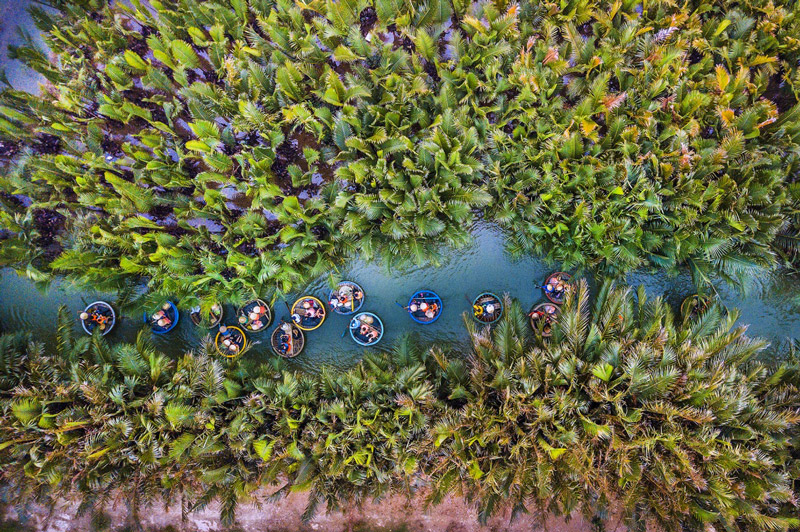 Trải nghiệm rừng dừa Bảy Mẫu