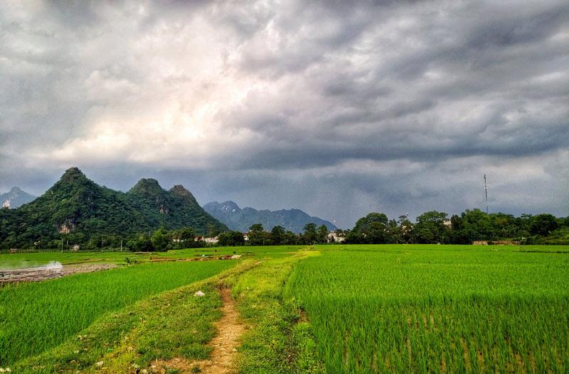 Kim Bôi Hòa bình cách Hà Nội bao nhiêu Km