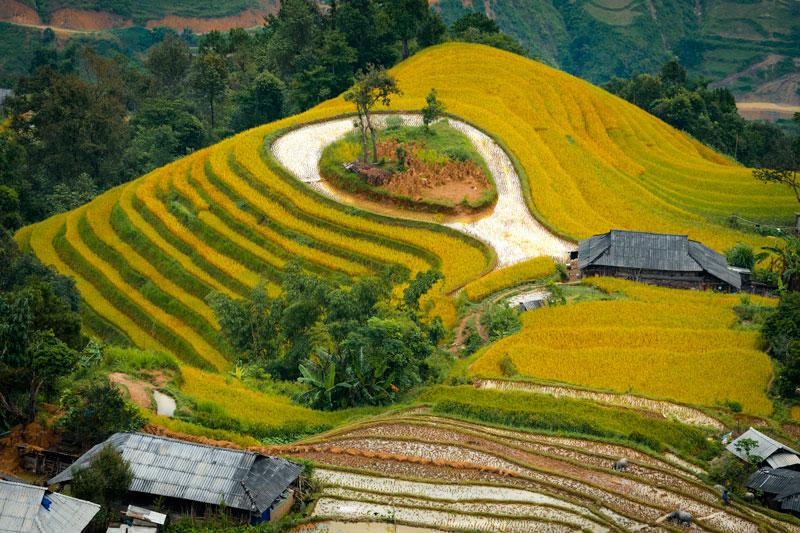 giữ gìn và phát triển ruộng bậc thang Hoàng Su Phí