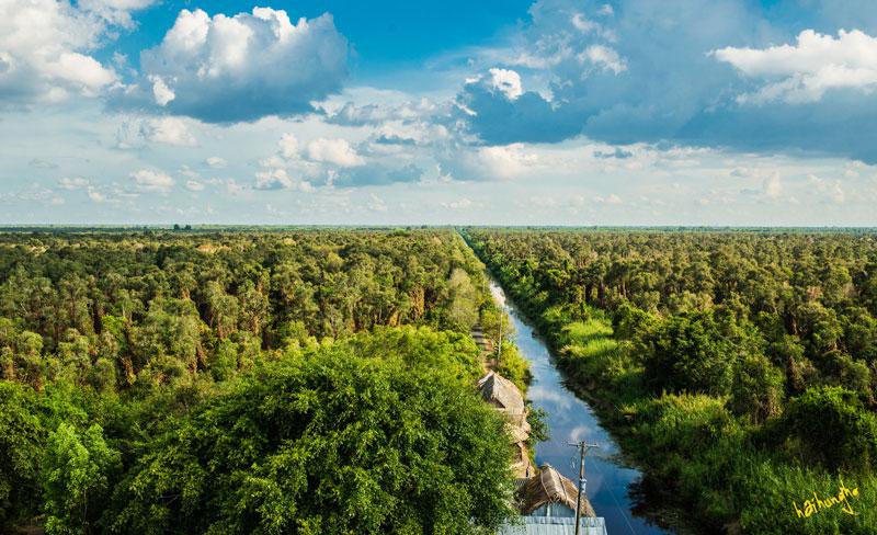 Khám phá thiên nhiên đất mũi Rừng U Minh Hạ Cà Mau