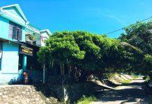 các homestay đẹp ở Cù Lao Chàm