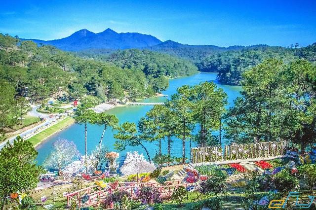địa điểm du lịch gần nhau ở Đà Lạt: tuyến du lịch theo hướng mai anh đào