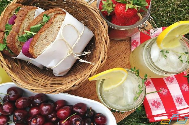 Cẩm nang du lịch Kỳ Sơn Nghệ An: picnic ngoài tời ở kỳ sơn