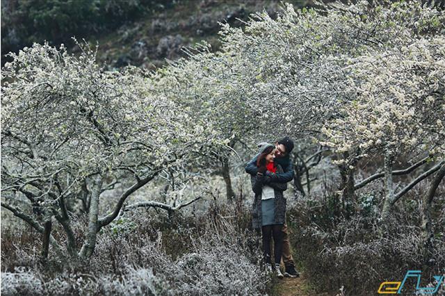 Chia sẻ cho bạn kinh nghiệm du lịch mùa đông ở Nghệ An
