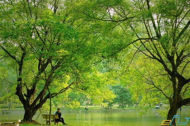 hà nội và các địa điểm ưu thích: công viên bách thảo
