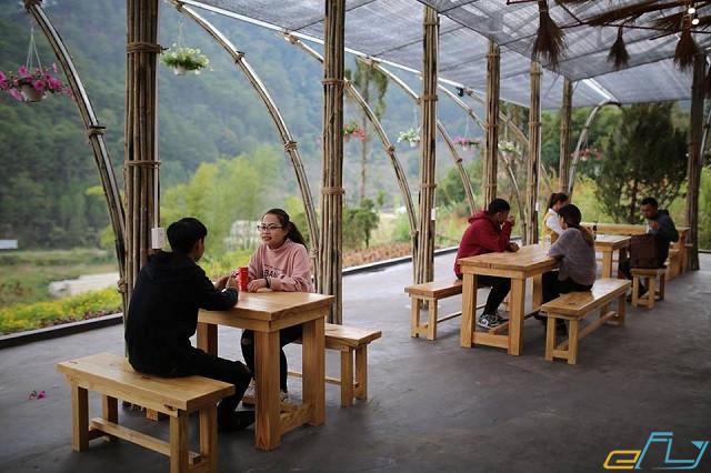 Dạo quanh khu vườn Nhật Bản siêu mới ở Đà Lạt