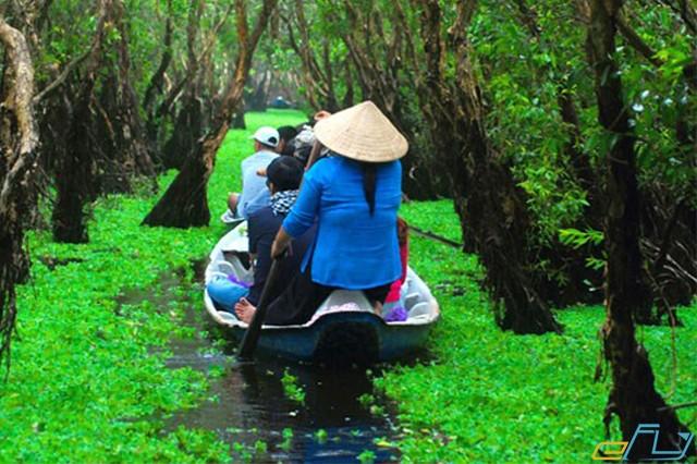 rừng tràm trà sư mùa nước nổi miền tây