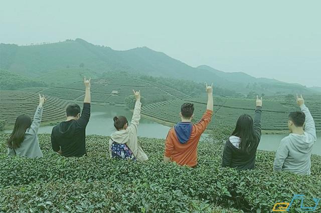 kinh nghiệm du lịch mùa đông ở Nghệ An: đảo chè cầu cau thanh an, nghệ an