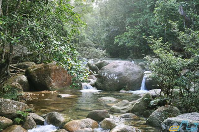 địa điểm du lịch ở Bắc Giang khu sinh thái đồng thông