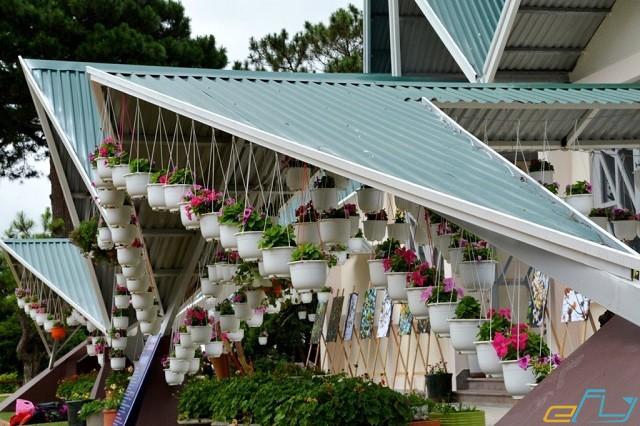 nhà trang trí bằng chậu hoa ở đà lạt
