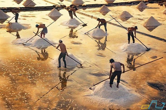 điểm đến du lịch bạc liêu: cánh đồng muối bạc liêu
