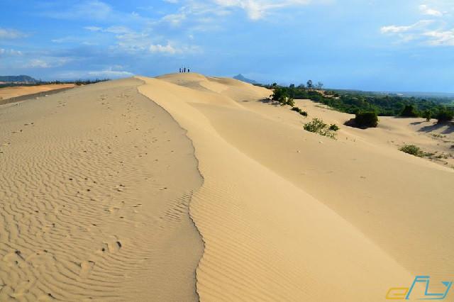 địa điểm du lịch Ninh Thuận: đồi cát nam cương