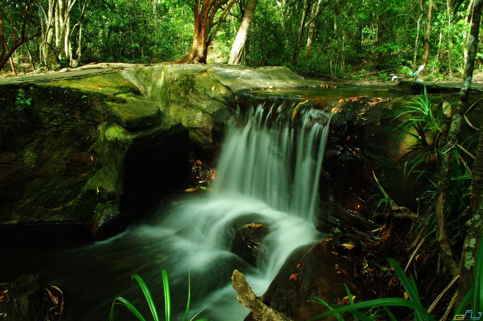 điểm đến ưu thích vườn quốc gia phú quốc